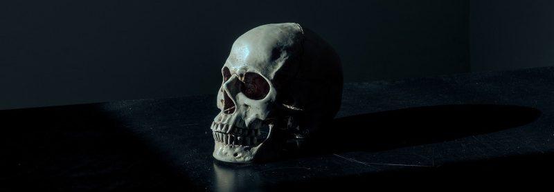 Human Skull Symbolizing Death